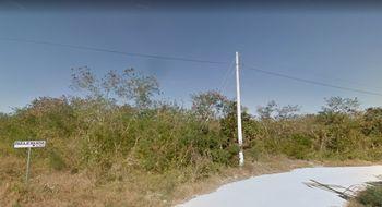 Se Vende Terreno De 75 000 M2 7 5 Hectareas Con Papeles En Regla Entre Chicxulub Pueblo Y Puerto Yucatan
