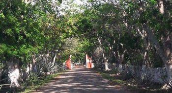 NEX-5335 - Terreno en Venta en Yaxkukul, CP 97348, Yucatán.