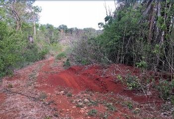 NEX-14077 - Terreno en Venta en Tzucacab Centro, CP 97960, Yucatán, con 45000000 m2 de construcción.