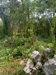 NEX-17059 - Terreno en Venta en Xmatkuil, CP 97315, Yucatán.