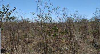 NEX-28771 - Terreno en Venta en Los Héroes, CP 97306, Yucatán.