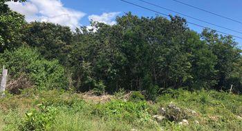 NEX-32979 - Terreno en Venta en Paa Mul, CP 77735, Quintana Roo.