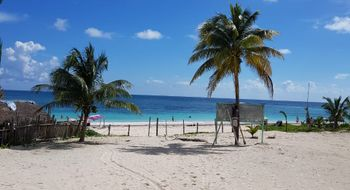 NEX-22736 - Terreno en Venta en Xpu Ha, CP 77734, Quintana Roo.
