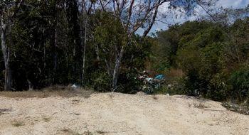 NEX-28678 - Terreno en Venta en Supermanzana 319, CP 77536, Quintana Roo.