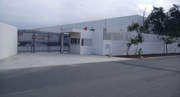 NEX-29010 - Bodega en Renta en Playa del Carmen, CP 77710, Quintana Roo, con 2 medio baños, con 300 m2 de construcción.