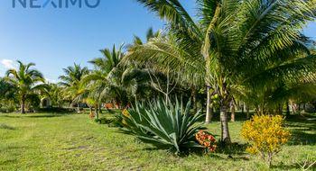 NEX-5408 - Terreno en Venta en Leona Vicario, CP 77590, Quintana Roo, con 4 recamaras, con 2 baños, con 300 m2 de construcción.