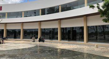 NEX-5827 - Oficina en Renta en Cancún Centro, CP 77500, Quintana Roo, con 2 baños, con 267 m2 de construcción.