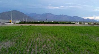 NEX-12404 - Terreno en Venta en Saucillo, CP 27487, Coahuila de Zaragoza.