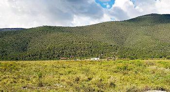 NEX-8181 - Terreno en Venta en San Antonio de las Alazanas, CP 25370, Coahuila de Zaragoza, con 40 recamaras, con 40 baños.
