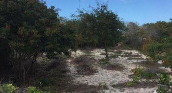 NEX-21967 - Terreno en Venta en Chelem, CP 97336, Yucatán.