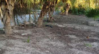 NEX-22118 - Terreno en Venta en Chicxulub Puerto, CP 97330, Yucatán.