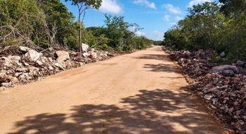 NEX-10202 - Terreno en Venta en Yaxkukul, CP 97348, Yucatán.