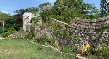 NEX-20883 - Terreno en Venta en Leona Vicario, CP 77590, Quintana Roo, con 10000 m2 de construcción.