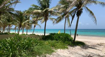 NEX-30805 - Terreno en Venta en Xpu Ha, CP 77734, Quintana Roo.