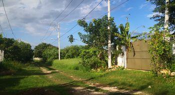 NEX-22852 - Terreno en Venta en La Castellana, CP 97203, Yucatán, con 1 m2 de construcción.