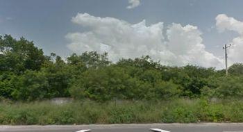 NEX-23790 - Terreno en Venta en San Ignacio, CP 97334, Yucatán.