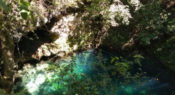NEX-6658 - Terreno en Venta en Puerto Morelos, CP 77580, Quintana Roo.