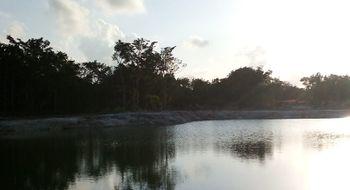 NEX-7481 - Terreno en Venta en Cancún (Internacional de Cancún), CP 77569, Quintana Roo.