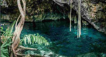 NEX-9172 - Terreno en Venta en Tulum Centro, CP 77760, Quintana Roo.