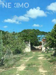 NEX-21951 - Terreno en Venta, con 8 recamaras, con 8 baños, con 3000 m2 de construcción en Yobaín, CP 97425, Yucatán.