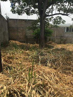 Terreno en Venta en Anacleto Canabal 3ra. Sección, Centro, Tabasco | NEX-42255 | Neximo | Foto 3 de 4