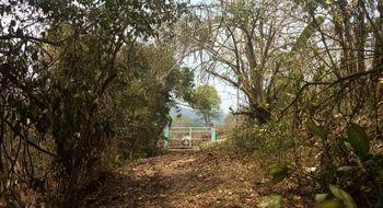 NEX-10132 - Terreno en Venta en Cerro La Marimba, CP 29120, Chiapas.