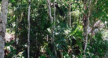 NEX-26945 - Terreno en Venta en Akumal, CP 77776, Quintana Roo.