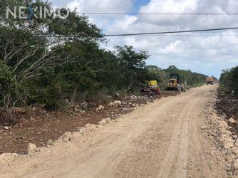 NEX-46002 - Terreno en Venta en Santa Clara, CP 97504, Yucatán.