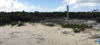 NEX-47437 - Terreno en Venta, con 1 m2 de construcción en Isla Blanca, CP 77400, Quintana Roo.