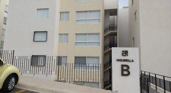 NEX-16681 - Departamento en Renta en Privalia Ambienta, CP 76147, Querétaro, con 2 recamaras, con 2 baños, con 72 m2 de construcción.