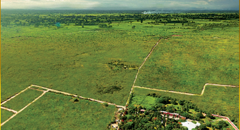 NEX-14342 - Terreno en Venta en Yaxkukul, CP 97348, Yucatán.
