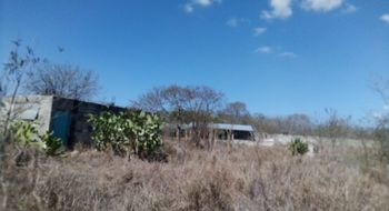 NEX-18445 - Terreno en Venta en Sitpach, CP 97306, Yucatán, con 1 recamara, con 1 baño, con 1 m2 de construcción.