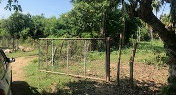 NEX-16065 - Terreno en Venta en Cerrito de Oro, CP 40986, Guerrero.