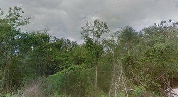 NEX-18692 - Terreno en Venta en Tesoco, CP 97793, Yucatán.