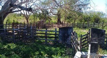 NEX-19581 - Terreno en Venta en Pabalam, CP 97776, Yucatán.