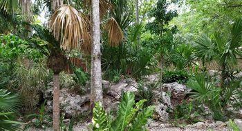 NEX-20887 - Terreno en Venta en Yalcon, CP 97795, Yucatán, con 1 recamara, con 1 baño, con 100 m2 de construcción.