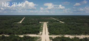 NEX-52376 - Terreno en Venta en Yaxcopoil, CP 97396, Yucatán.