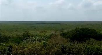 NEX-30070 - Terreno en Venta en Bahía, CP 77079, Quintana Roo, con 10350 m2 de construcción.