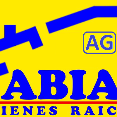 Amaury Godoy Fabian