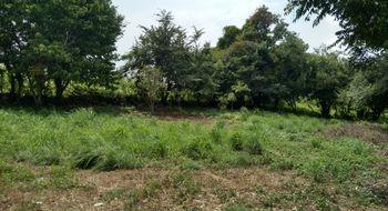 NEX-22653 - Terreno en Venta en Copoya, CP 29100, Chiapas.