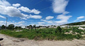 NEX-24229 - Terreno en Venta en Plan de Ayala, CP 29020, Chiapas.