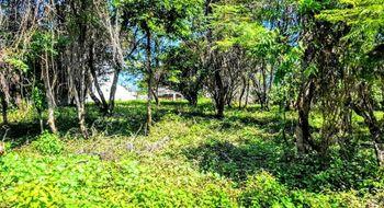 NEX-28358 - Terreno en Venta en Delicias, CP 62330, Morelos.