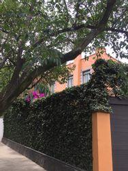 NEX-35695 - Casa en Renta en Lomas de Chapultepec IV Sección, CP 11000, Ciudad de México, con 4 recamaras, con 3 baños, con 1 medio baño, con 400 m2 de construcción.