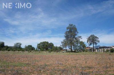 Terreno en Venta en Rancheria Calapa, Chignahuapan, Puebla | NEX-649 | Neximo | Foto 2 de 5