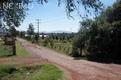 Terreno en Venta en Rancheria Calapa, Chignahuapan, Puebla | NEX-649 | Neximo | Foto 3 de 5