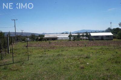 Terreno en Venta en Rancheria Calapa, Chignahuapan, Puebla | NEX-649 | Neximo | Foto 4 de 5