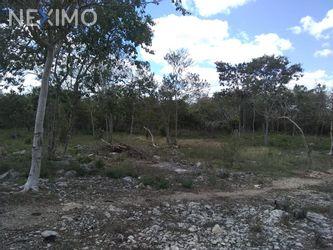 NEX-45816 - Terreno en Venta, con 80 m2 de construcción en San Antonio Millet, CP 97476, Yucatán.