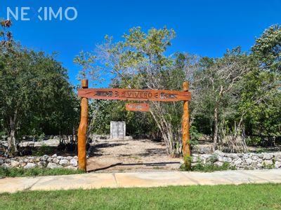 Terreno en Venta en San Ignacio, Progreso, Yucatán | NEX-40254 | Neximo | Foto 4 de 5