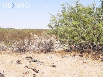 NEX-47661 - Terreno en Venta, con 1 recamara, con 1 baño en Samalayuca, CP 32730, Chihuahua.
