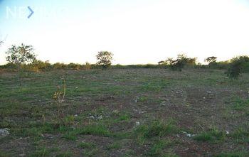 NEX-47946 - Terreno en Venta en Chicxulub, CP 97340, Yucatán.